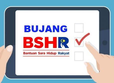 BSH Bujang Bantuan Sara Hidup img 2