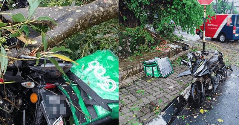 Penunggang Grab Food Maut Dihempap Pokok Ketika Hujan Lebat